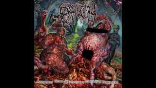 Epicardiectomy - Vaginal Colony Full Of Vermin