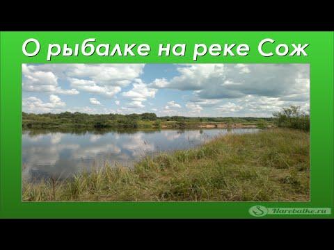 зимняя рыбалка в украине - 2014-07-19 18:44:27