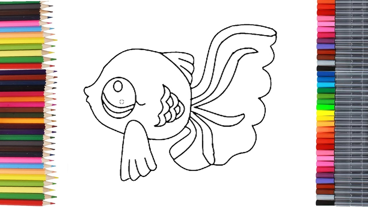 Dessin et coloriage d 39 un poisson littlest pet shop pour les enfants youtube - Coloriage pet shop ...