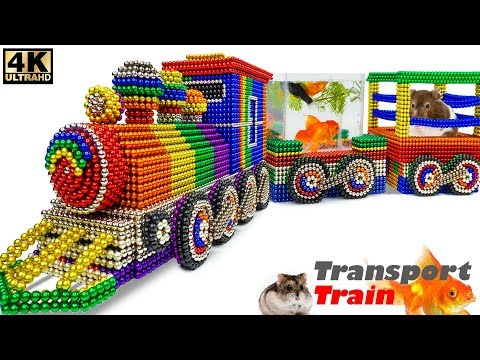 DIY - How To Make Transport Train for Pet From Magnetic Balls (Satisfying Relax) | Magnet Satisfying