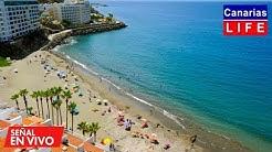 📹🔴 LIVE WEBCAM from Patalavaca Mogán Gran Canaria