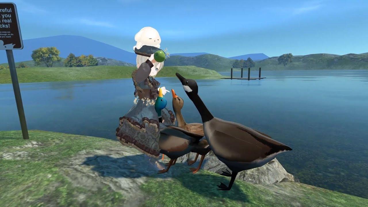 鴨に餌を与える届木ウカ