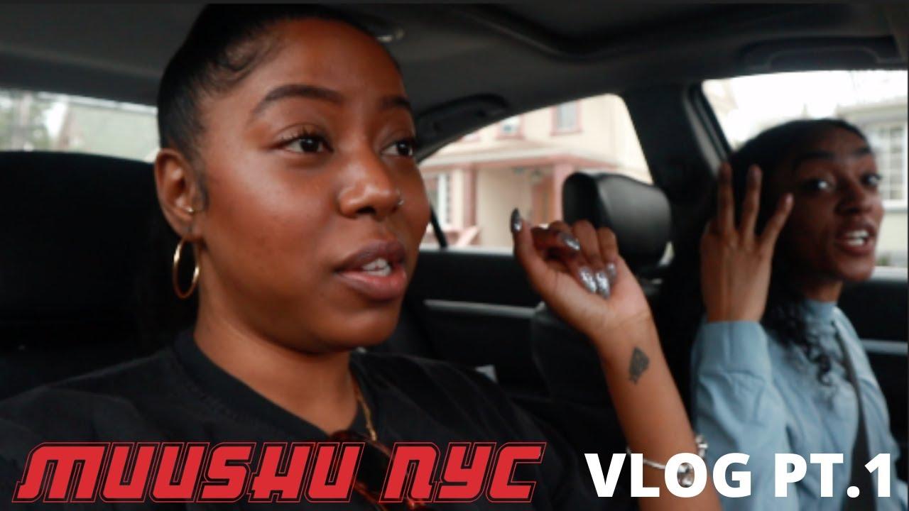 Download MuuTube Vlog Part 1