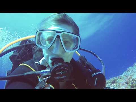 Diving Palau 2018 English Version SD - DiveSpotChecker.De