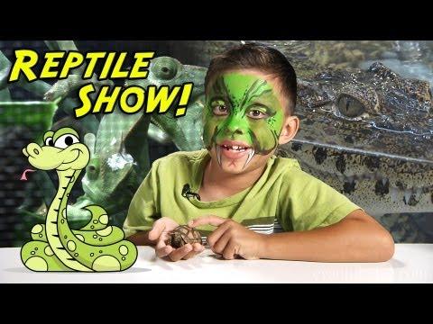 2013 REPTILE SHOW! Snakes, Lizards, Turtles, Tarantulas and MORE!