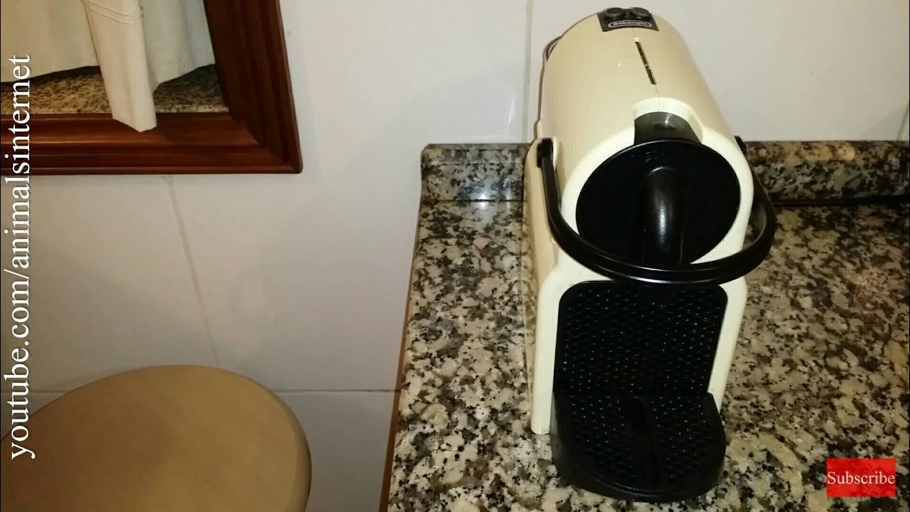 descale nespresso delonghi machine