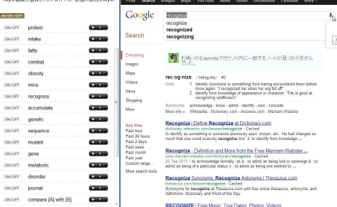 Japanese English VS Google Translate Voice Recognition ...