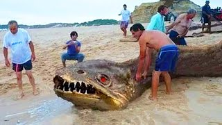 10 DEADLIEST Animals You're Glad Are Extinct