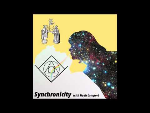 Michael Donovan - Episode 11 - Synchronicity Podcast with Noah Lampert