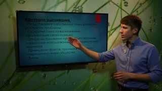 видео Готовимся к ЕГЭ: эссе по обществознанию