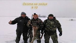 Выпуск №10/Охота на зайца