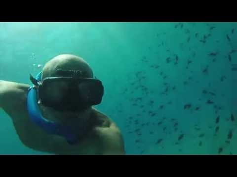 Freediving maro