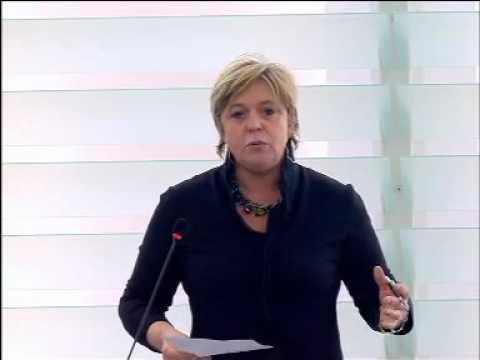 Hilde Vautmans 20 Jan 2016 plenary speech on Mutual defence clause