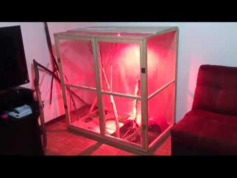 Como hacer un terrario para iguanas blacky blog youtube - Como construir un terrario ...