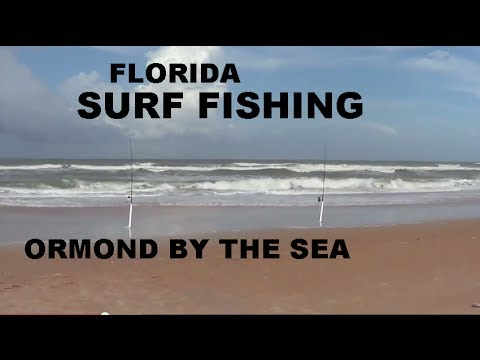 SURF FISHING - EAST CENTRAL FLORIDA