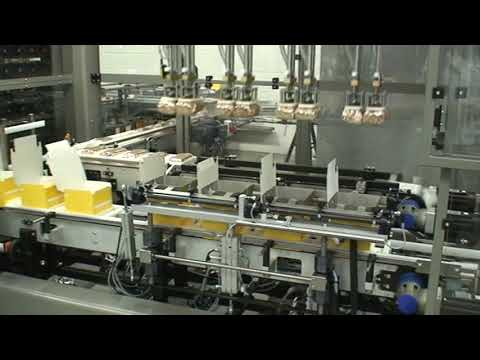 Case Packing System With Integrated Buffer Store
