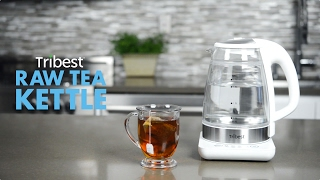 Tribest Glass Raw Tea Kettle