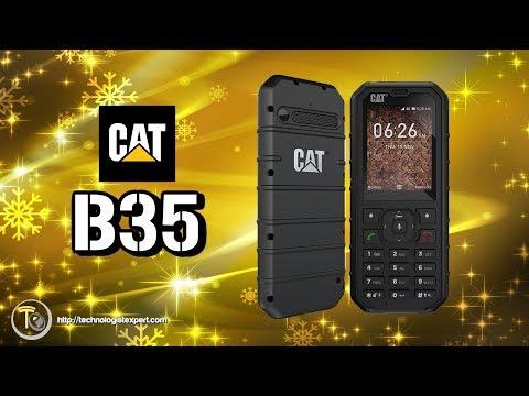 Cat B35 Root Videos - Waoweo