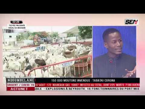 Ndoumbelane | 150 000 moutons invendus : Tabaski Corona