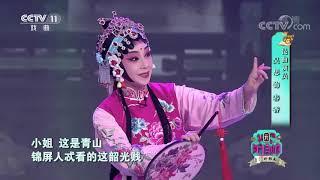 [梨园闯关我挂帅]昆曲《牡丹亭》选段 演唱:罗丹 吴思| CCTV戏曲 - YouTube