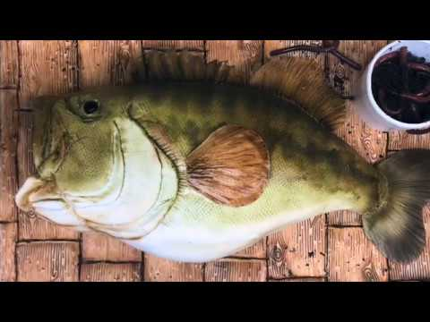 Realistic Fish Cake Time-lapse