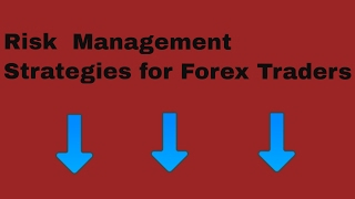 Forex Trading Risk Management - Forex for Beginners - Risk Management Explained