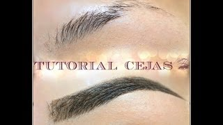 tutorial para cejas perfectas perfect eye brow tutorial   auroramakeup