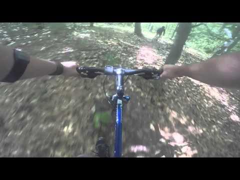 Wendell State Forest Mountain biking
