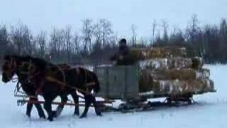 Neil Dimmocks sleigh