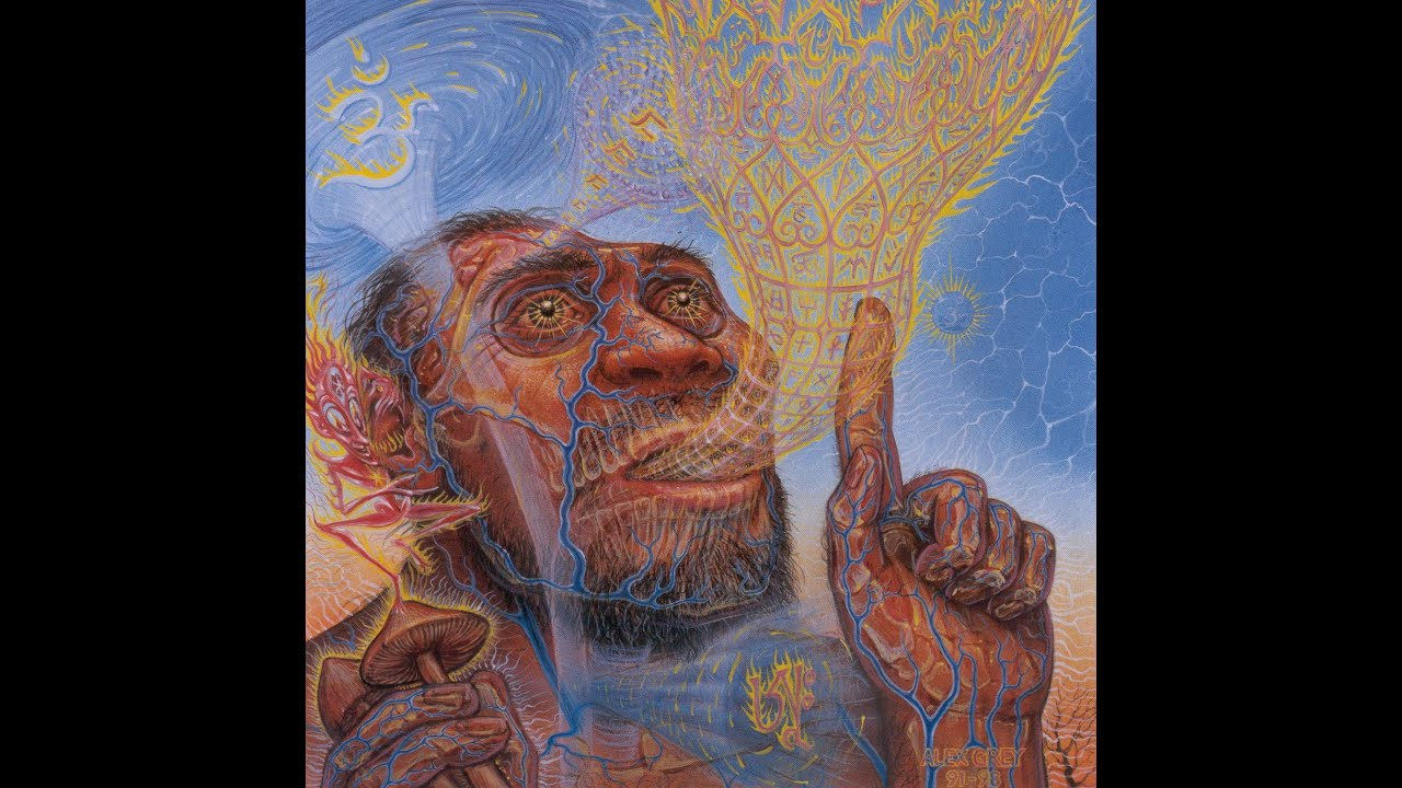Kilindi Iyi: High-Dose (31 Grams) Psilocybin Mushrooms Ayahuasca DMT LSD  Transdimensional Hyperspace