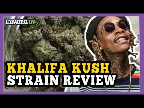Wiz Khalifa Kush Weed Strain Review