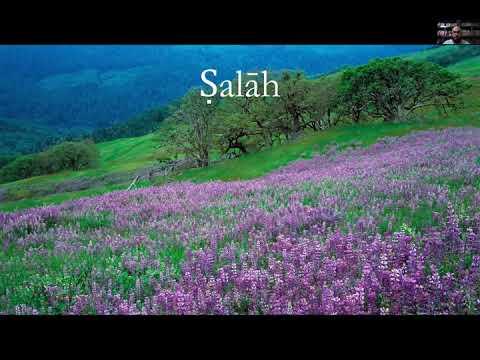 Al-Arba'in al-Nawawiyyah Hadith 3.4 || Shaykh Nafis