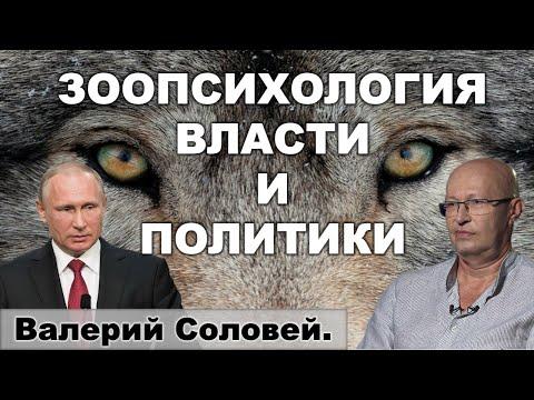 Валерий Соловей о