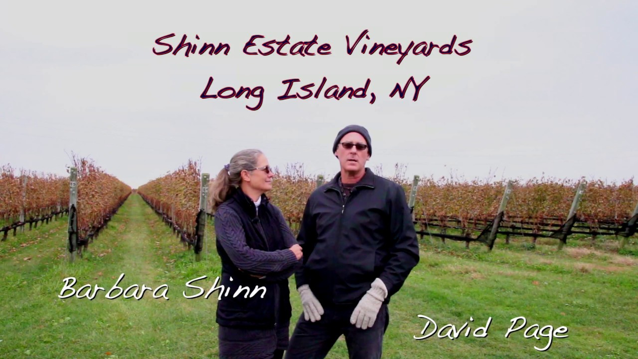 Shinn Estate Farmhouse Bed David Page And Barbara Shinn Of Shinn Estate Vineyards In Long Island Ny