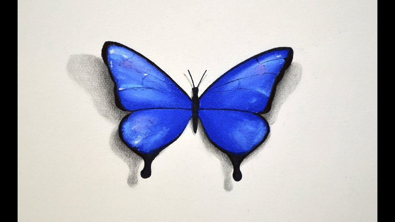 How To Draw A Butterfly With Pastel  Fine Arttips
