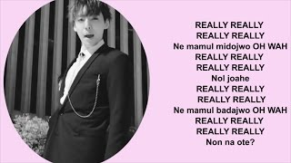 WINNER - 'REALLY REALLY' (Romanization/EASY LYRICS /letra facil)