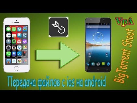 Как передать файлы между iOS, Android и Windows Phone по WiFi