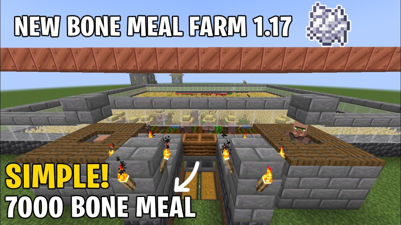 How to Make Bone Meal Farm in Minecraft 1.17 Unlimited Bonemeal