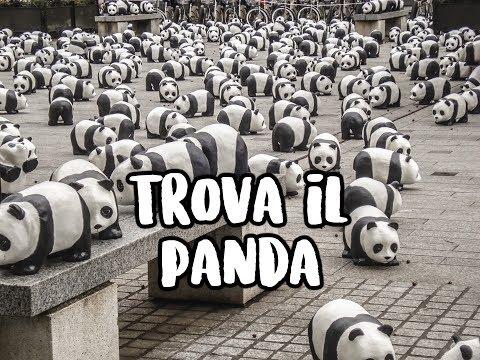 TROVA IL PANDA NASCOSTO - Riuscirai a trovarlo in meno di 90 secondi?