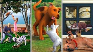 Питомцы в The Sims | Сравнение 3 частей
