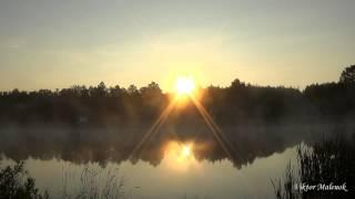 видео Force of Nature (Сила природы)