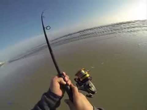 Fishing New Smyrna Beach In February