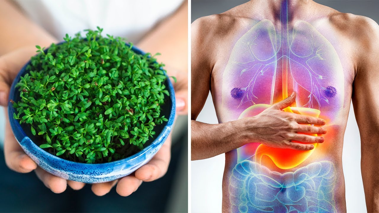 This Is The World's Healthiest Vegetable And You Are Probably NOT Eating