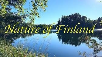 Beautiful nature of Finland / Tampere city / Lentävänniemi