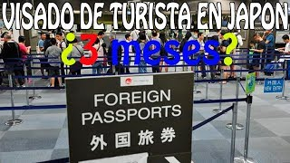 Visado japon turista. no son 3 meses