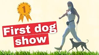 Our first DOG SHOW!!!