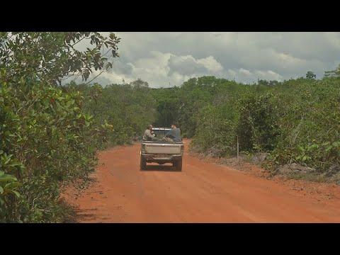 Brazil's Bolsonaro to merge Environment, Farm ministries