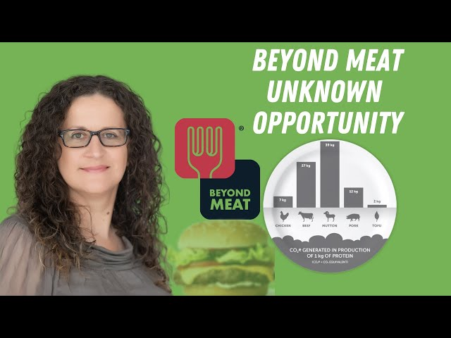 Beyond Meat ( BYND )   - Unknown  Investment Opportunity
