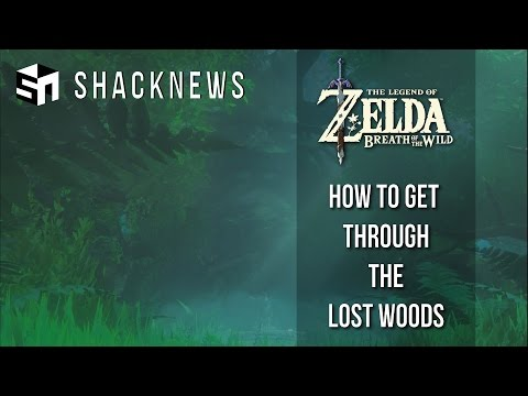 Zelda: Breath of the Wild - How to Get Through the Lost Woods