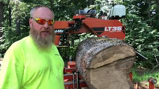 Milling a salvaged oak trunk on a Wood-Mizer LT35